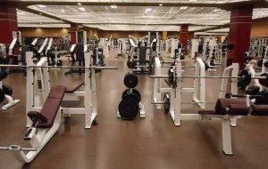 Machines Vs Free Weights